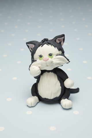 Black and white kitten mini cake